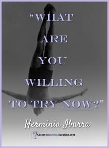 Herminia-Ibarra